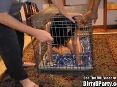 Adorable sex bombs have some action in a cage